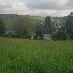 Aussicht auf den Weinberg