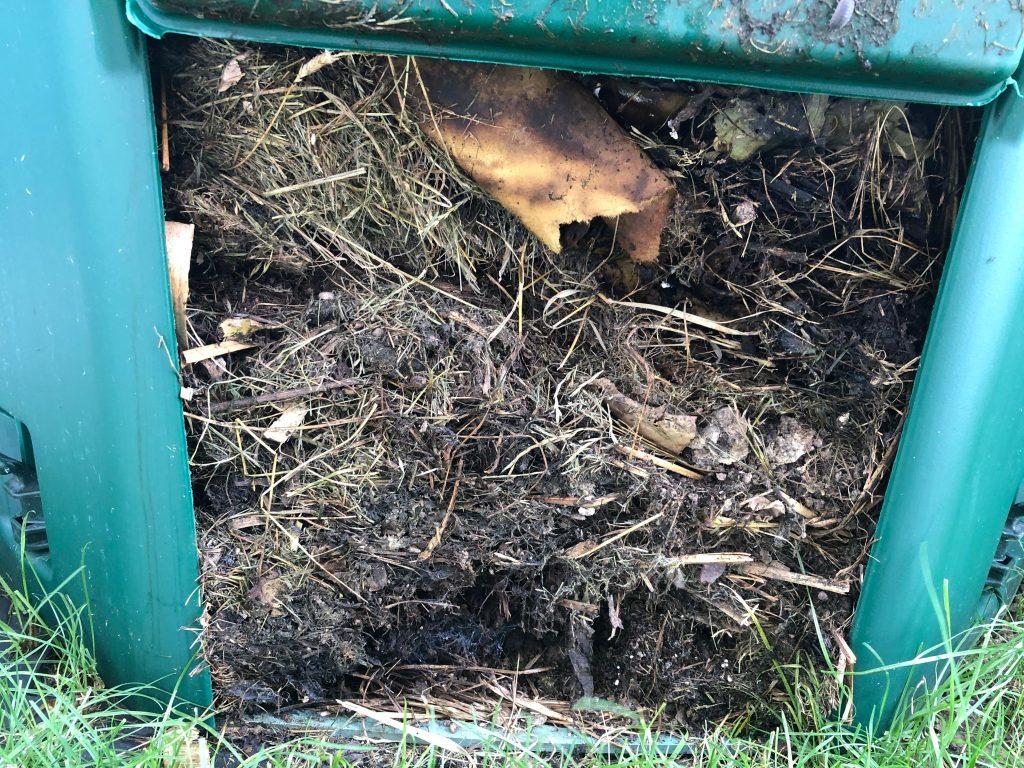 Rotte / Komposterde nach knapp 3 Monaten
